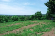 Land for sale at kubutambahan Singaraja