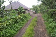 Land For Sale at Pucak Sari singaraja