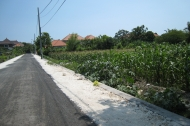 Land for sale front of Bros hospital renon