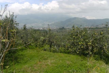 Land for sale in malang