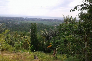 LAND FOR SALE IN NUSA TENGGARA BARAT